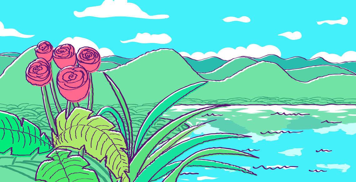 plantas-blog